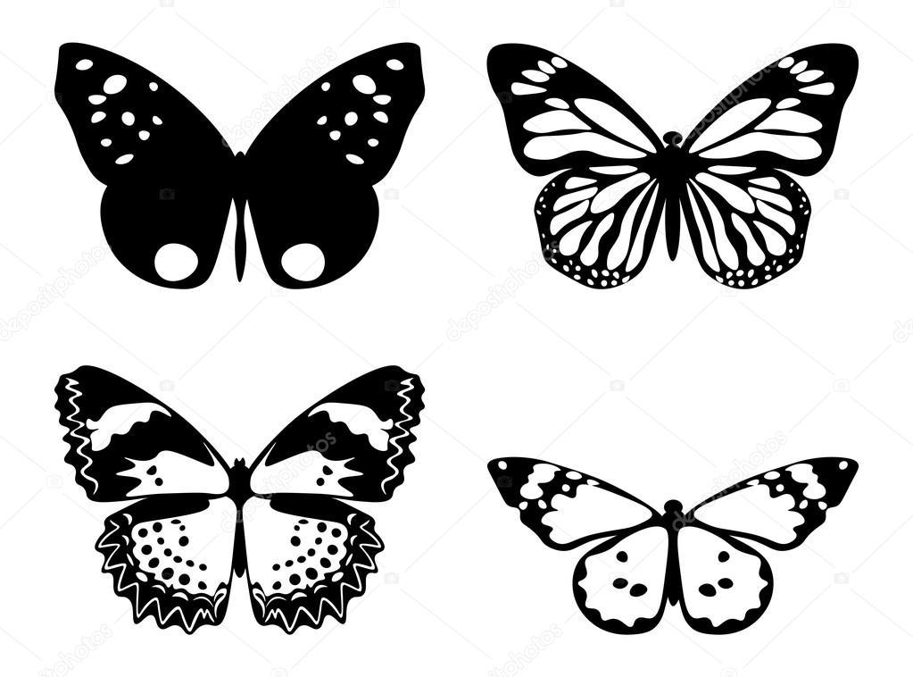 Farfalla In Bianco E Nero