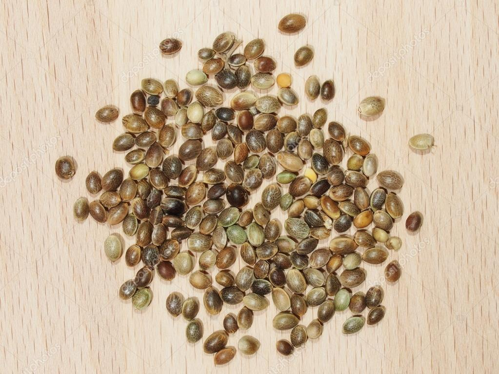 Hemp seeds close up isolation on wood background