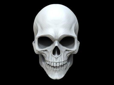 White clay skull