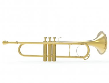 Golden Trumpet - Side View