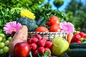 Sokféle friss organikus zöldségek és gyümölcsök a kertben