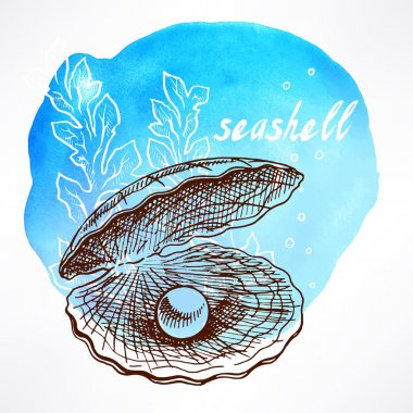 seaweed and shell with pearl