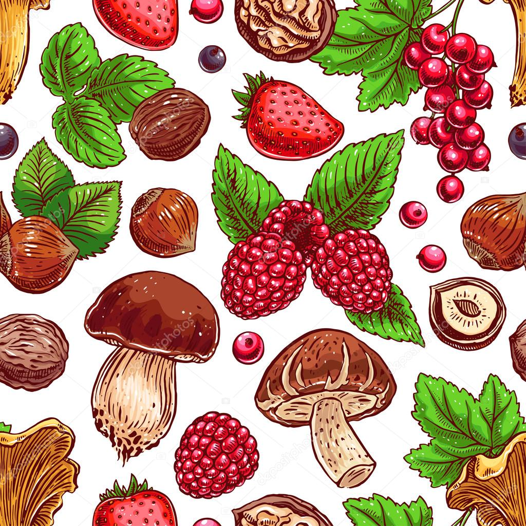 Background with colorful berries, nuts and mushrooms