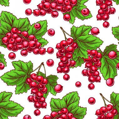 seamless red currants