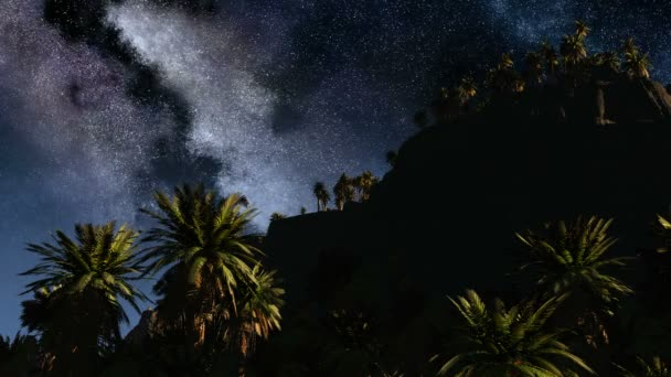 Barevné Mléčné dráhy a tropickou krajinu s palmami. Timelapse
