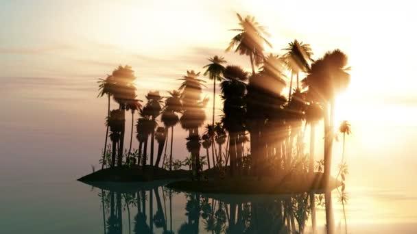 moře slunce s ostrovem a palem