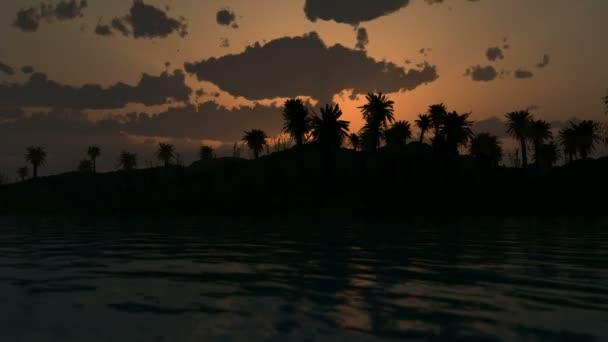Sunset a dlaně na oceán