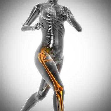 running woman radiography scan image