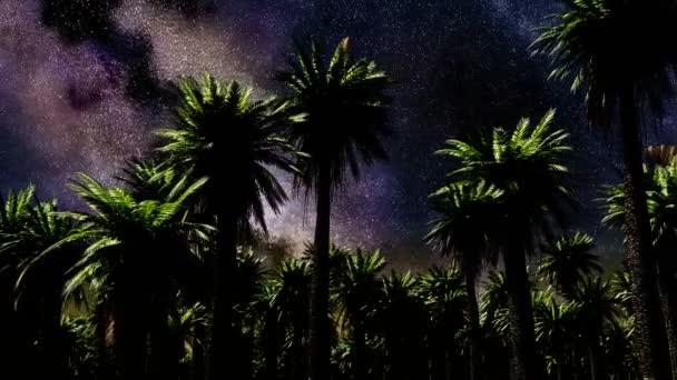 Hvězda časová prodleva, galaxie Mléčné dráhy pohybu přes noční oblohu a dlaně