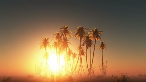 Glowing sun and palm trees