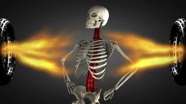 smyčka rotace skeletu