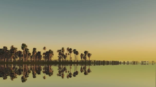 sri lanka inscription behind palm trees