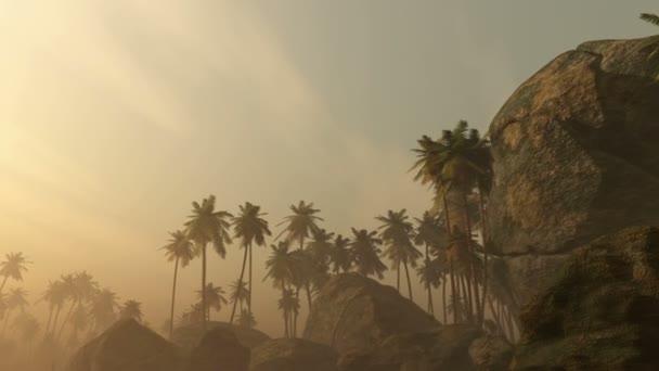 nádherný východ slunce nad tropické palmy džungle s paprsky slunce a hustá ranní mlha