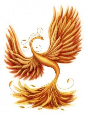 Magic firebird