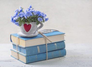 Pile of blue books