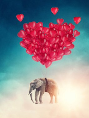 Flying elephant with balloons