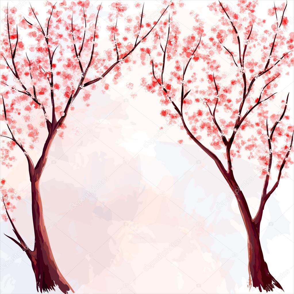 Cherry blossom. Watercolor illustration