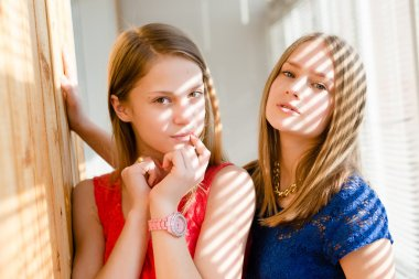 closeup portrait of 2 best girl friends or sisters beautiful blond young women having fun posing looking at camera on sun lighted blinds windows background picture
