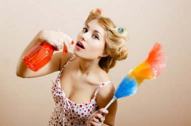 housewife posing with spray