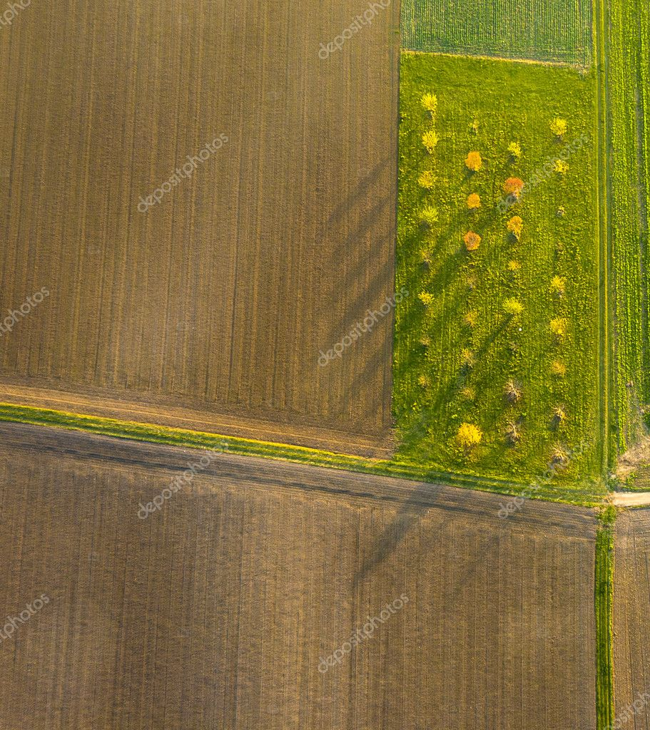 aerial of rural landscape with pattern of fields in sunset