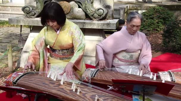 Japanese women playing the traditional instrument koto