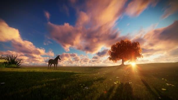 Krásné koně a strom života při západu slunce, cestování shot