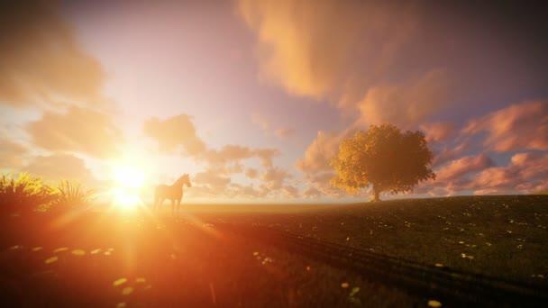 Krásné koně a strom života při západu slunce