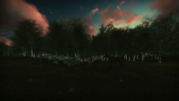 Březový les za úsvitu, koně na zelené louce