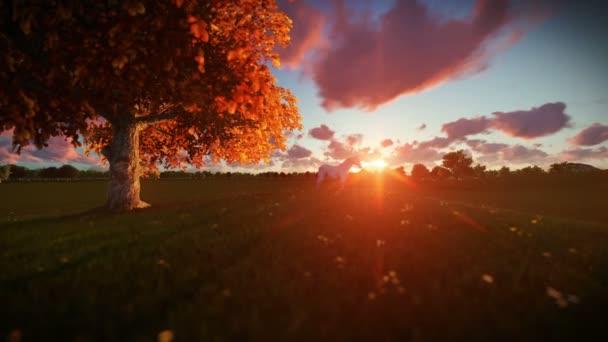 Bílý kůň a strom života při západu slunce-nakloněná rovina