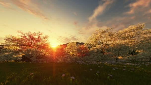 Jarní krajina, timelapse sunrise