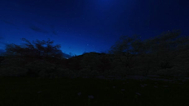 Spring forest and mountain, timelapse sunrise night to day