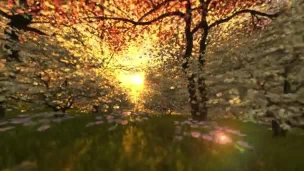 Tavaszi táj napkeltekor, kamera átrepülnek