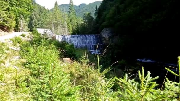 Nádherný vodopád v lese