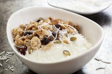 Yoghurt muesli or yogurt granola with coconut.