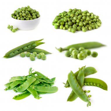 Peas Collection Isolated on White