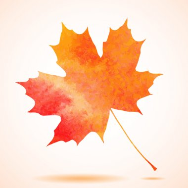 Orange watercolor painted vector autumn maple leaf background