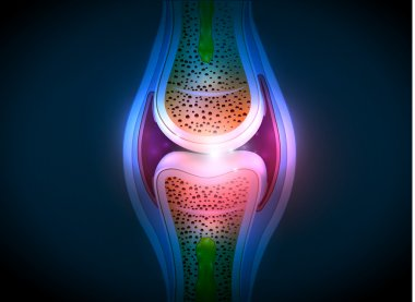 Synovial joint anatomy abstract bright design
