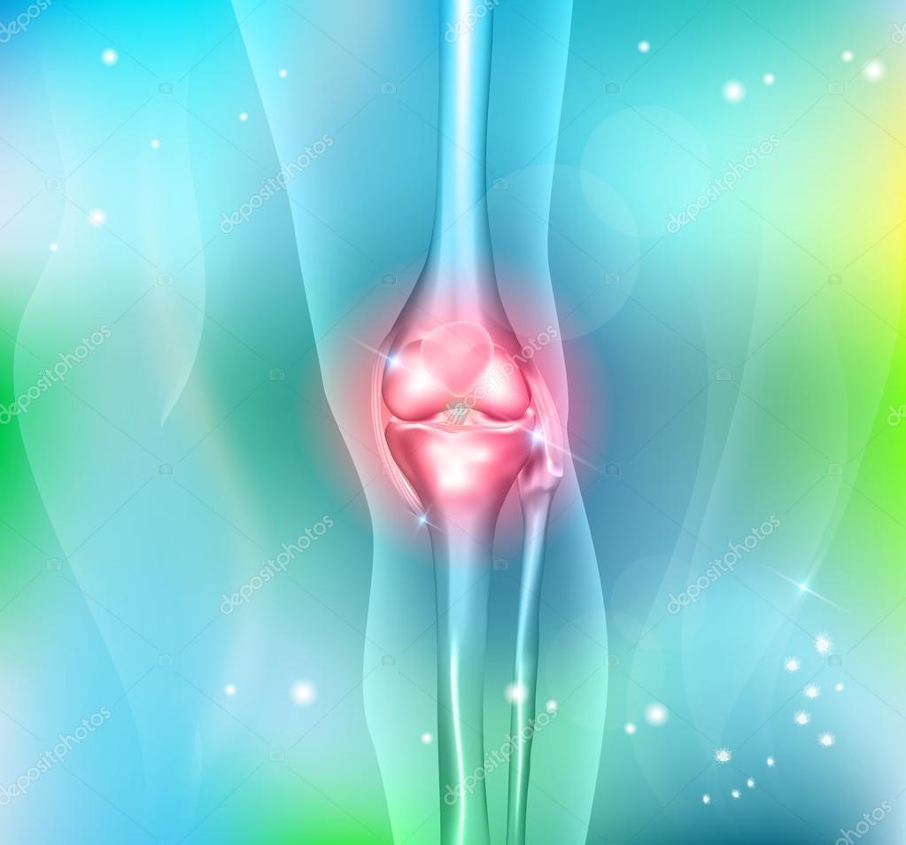 Las piernas humanas y anatomía articulación de rodilla, antecedentes ...