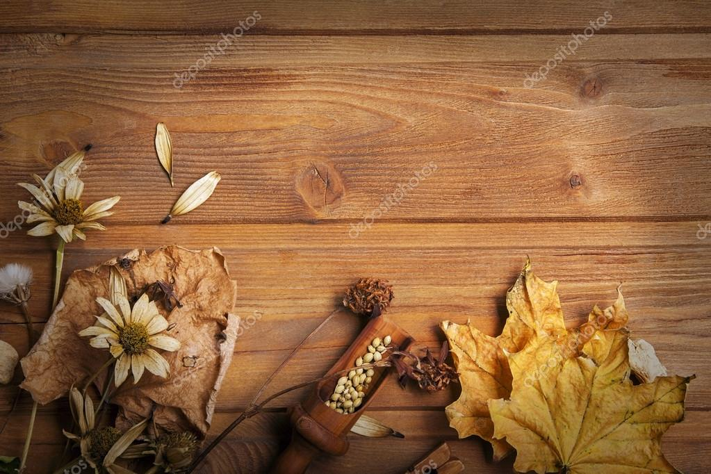 autumn background with spices, dried flowers, copy place for ins