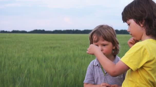 dvě děti studují Beruška louka