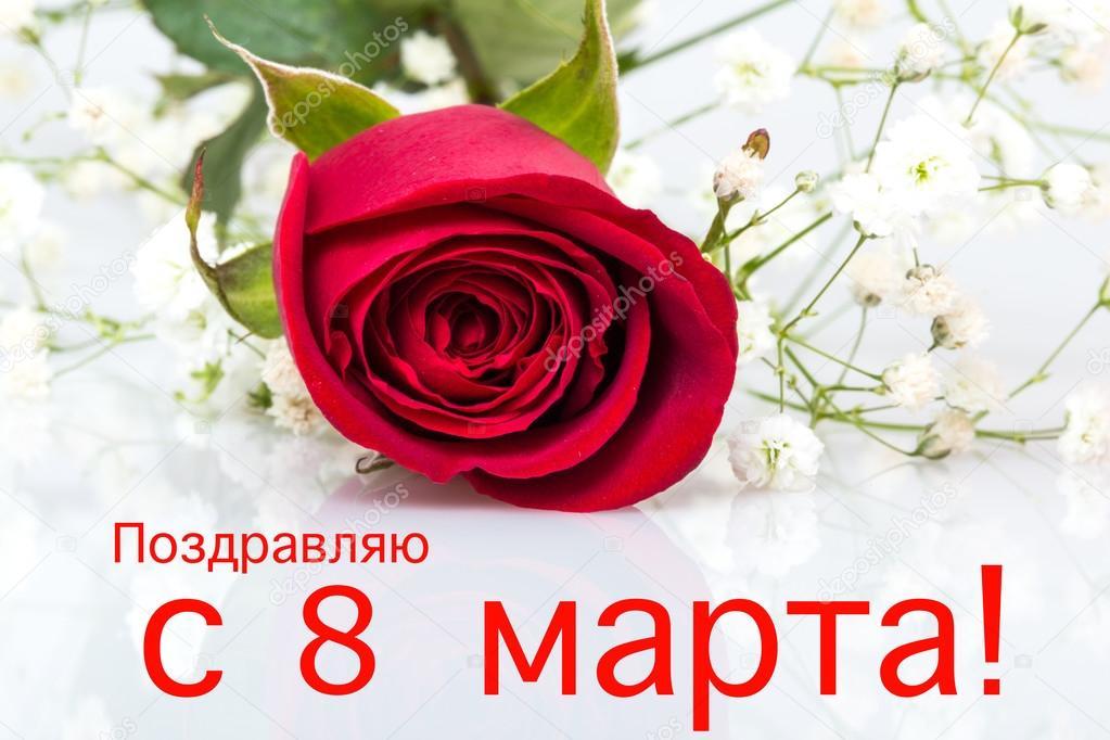 С 8 марта прикольные картинки поздравления любимой, милой картинки