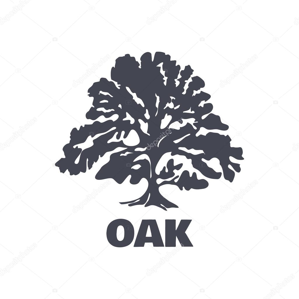 Stock Illustration Oak Tree Logo Silhouette Vector on tire date