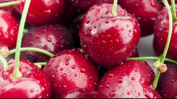 Dolly shot of Fresh, ripe, juicy cherries.