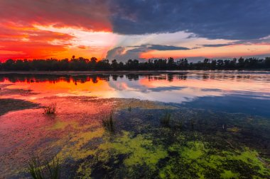 Amazingly colorful sunset