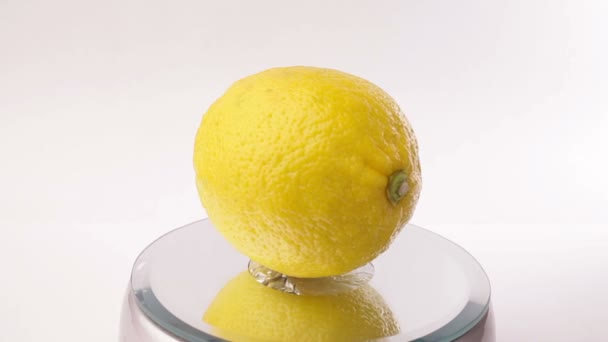 Fordítás-ra maga-fehér alapon sárga citrom
