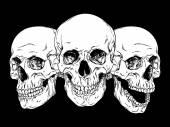 Kézzel rajzolt vonal művészeti anatómiailag helyes emberi koponyák beállítása elszigetelt vektoros illusztráció