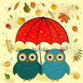 Fotografia gufi divertente con ombrello