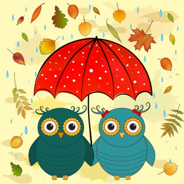 funny owls with umbrella