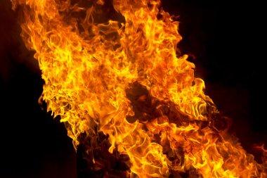 """Картина, постер, плакат, фотообои """"red fire flame on black background"""", артикул 90671798"""