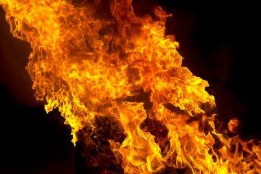 """Картина, постер, плакат, фотообои """"red fire flame on black background"""", артикул 95021960"""